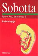 SOBOTTA / EMBRIOLOGIJA - karte za učenje anatomije - peter posel