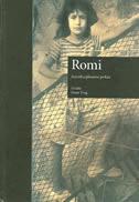 ROMI - interdisciplinarni prikaz - diane tong
