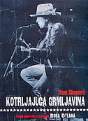 KOTRLJAJUĆA GRMLJAVINA - Putni dnevnik s turneje Boba Dylana - sam shepard
