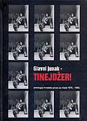 GLAVNI JUNAK - TINEJDŽER! - antologija hrvatske proze za mlade 1976.-1990. - ana đokić