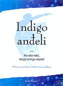 INDIGO ANĐELI - 40 kartica s porukama i jedinstvenim grafikama - daniel postružin