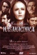 HASANAGINICA - mića popović