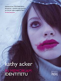 IN MEMORIAM IDENTITETU - kathy acker