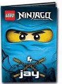 LEGO NINJAGO - JAY