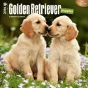 GOLDEN RETRIEVER PUPPIES (CALENDAR 2016)