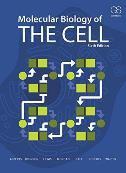 Molecular Biology of the Cell, 6/e - bruce alberts