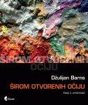 ŠIROM OTVORENIH OČIJU - Eseji o umetnosti - julian barnes